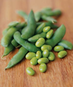 Best High Protein Foods - soy