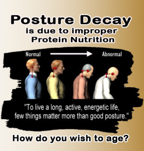 posture decay and the lack of good protein nutrition