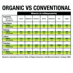 Organic Food Mlm