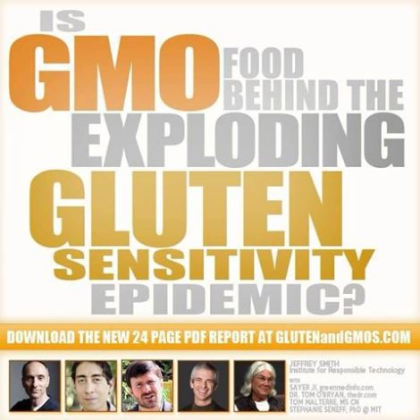 Image GM Foods Proposed as Trigger for Gluten Sensitivity