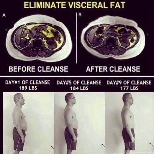 Eliminate visceral fat