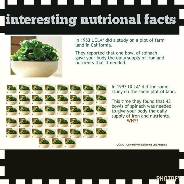 daily nutrients not in your diet