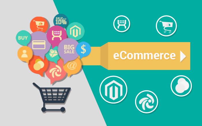 eCommerce Business Model like Amazon, eBay, Uber, Airbnb